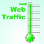 Website Visitor Statistics