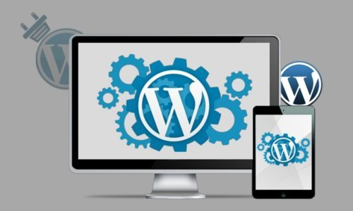 wordpress cms customization
